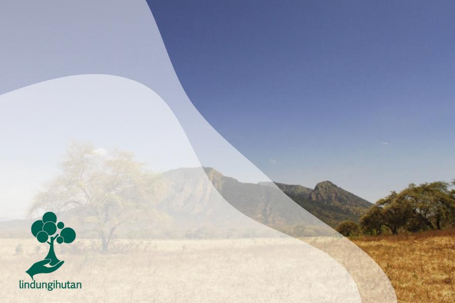 Taman Nasional Baluran untuk Kamu yang Lagi Suntuk!