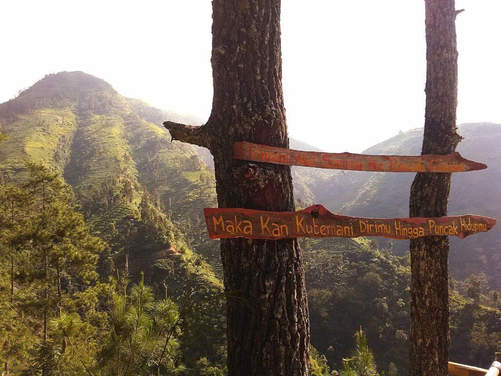 Jika hutan hilang, siapakah yang dirugikan?