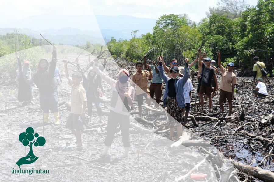 Rayakan Hari Mangrove Ala Relawan LindungiHutan Jayapura