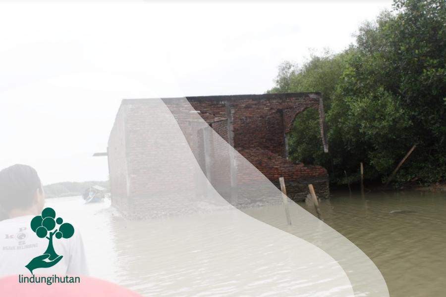 Solusi Penanggulangan Banjir Rob Yang Bisa Kamu Coba