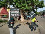 Kampanye Penyelamatan Burung Cendrawasih