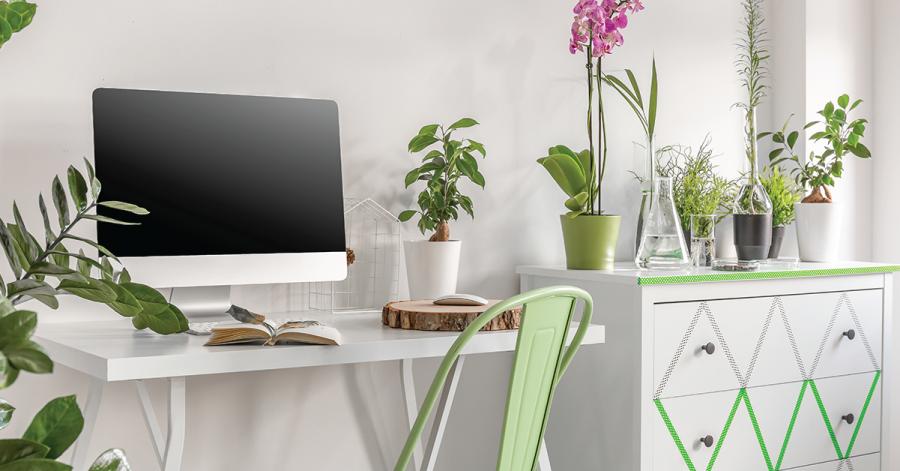 Hal Sederhana Untuk Membuat Kantormu Lebih Ramah Lingkungan