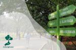 7 Aktivitas Yang Bisa Dilakukan di Hutan Kota