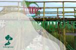 Mempawah Mangrove Park Ubah Abrasi Jadi Wisata