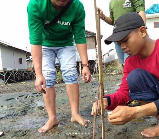 Relawan LindungiHutan Tanam Mangrove di Teluk Betung