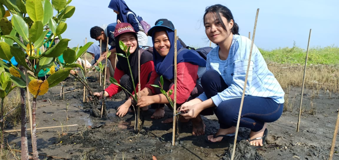 Pohon untuk Keberlangsungan Daratan Pantai Tirang
