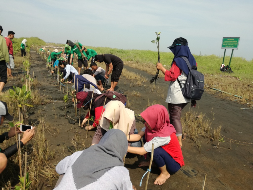 Dari Relawan LindungiHutan Semarang Untuk Tirang yang Hilang