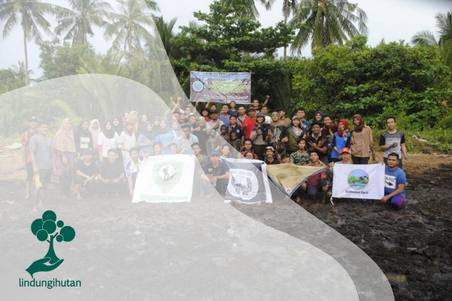 Relawan LindungiHutan Tanam Mangrove Di Ketapang