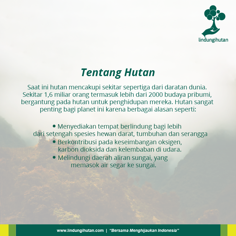 Manfaat hutan bagi manusia