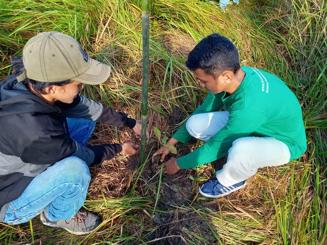 Kegiatan Relawan LindungiHutan Kendari saat Acara RawatBumi-Pengertian Relawan-Wanaswara