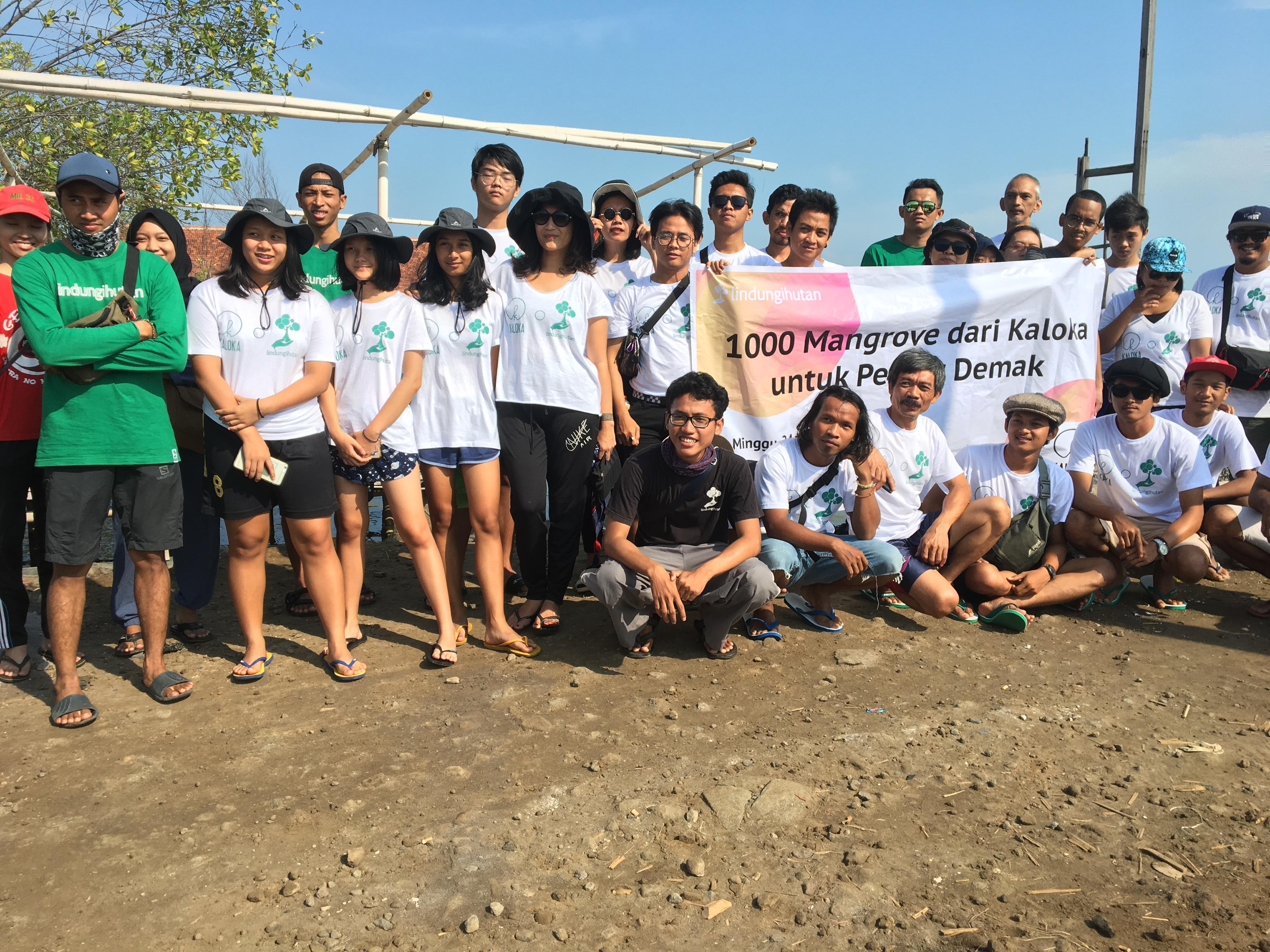 penanaman 1000 mangrove di pesisir Demak Kaloka Pottery dengan LndungiHutan