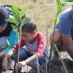 Ecolify Bantu Program Penghijauan Perusahaanmu!
