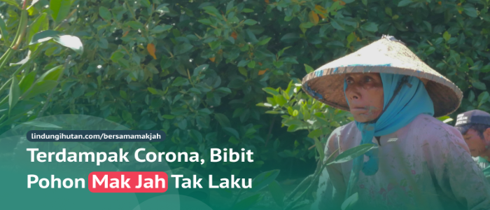 Inisiatif Mandiri Bantu Petani Indonesia