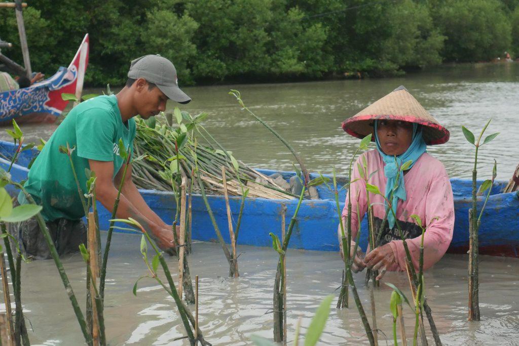 Inisiatif Mandiri LindungiHutan Bantu Petani Bibit