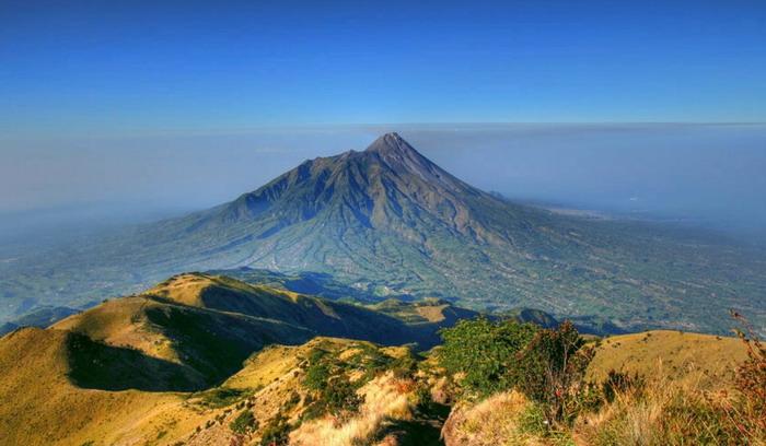 Gunung Merbabu Menyimpan Berbagai Pesona Flora dan Fauna yang Layak untuk Kamu Jelajahi