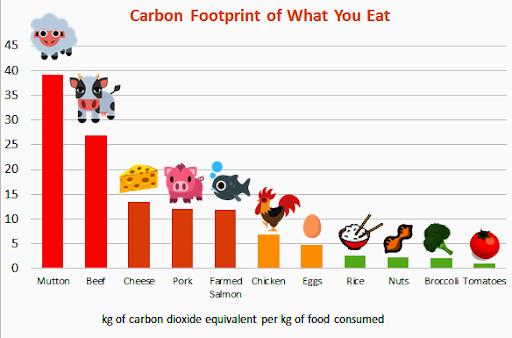 Jejak Karbon di Makanan yang Kamu Makan