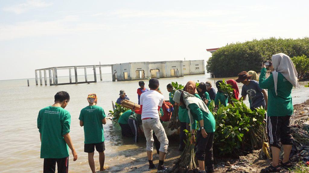 Rawat Semarang, Cegah Abrasi Tambakrejo