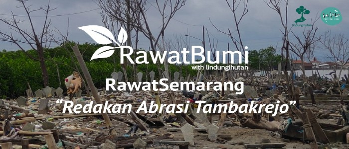 Rawat Semarang Redakan Abrasi Tambakrejo