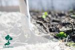 Potensi Karbon dan Struktur Nafkah Rumah Tangga Petani
