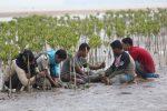Mangrove untuk Masyarakat Pesisir dan Lingkungan