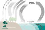 Penyimpanan Karbon, Upaya Penyelamatan Lingkungan