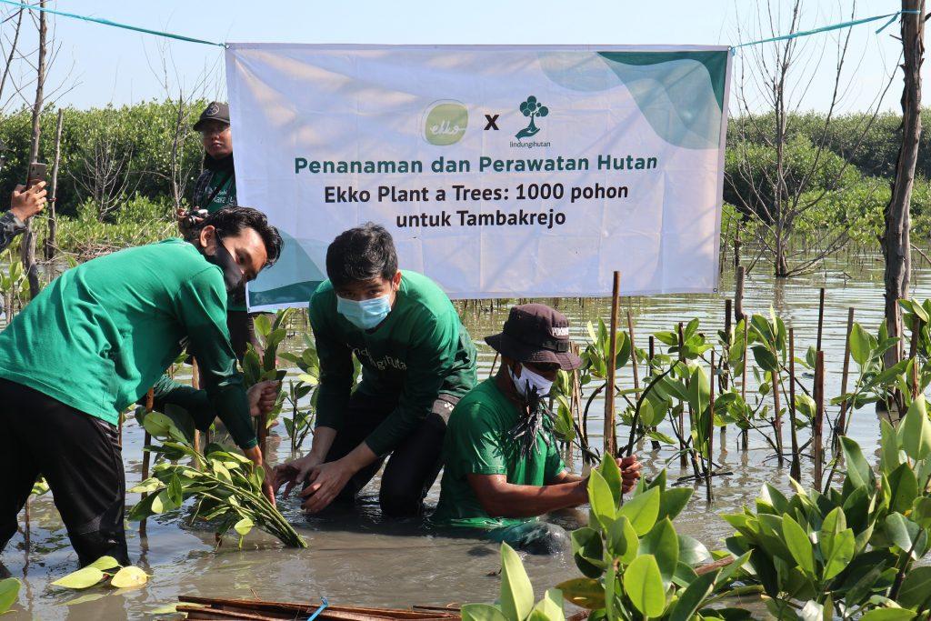 Ekko Plant a Tree 1000 Pohon untuk Tambakrejo