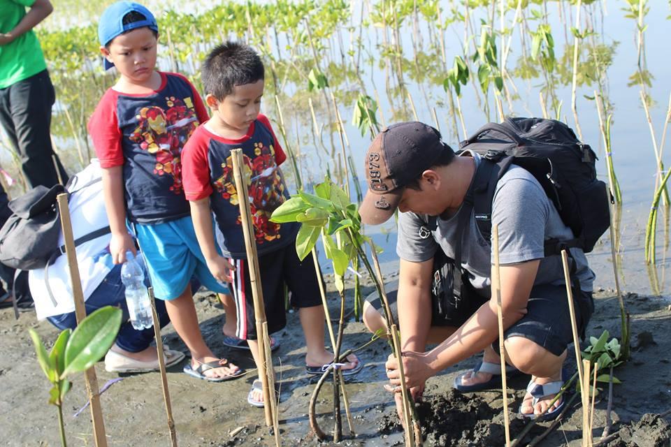 Menanam Bakau Mangrove