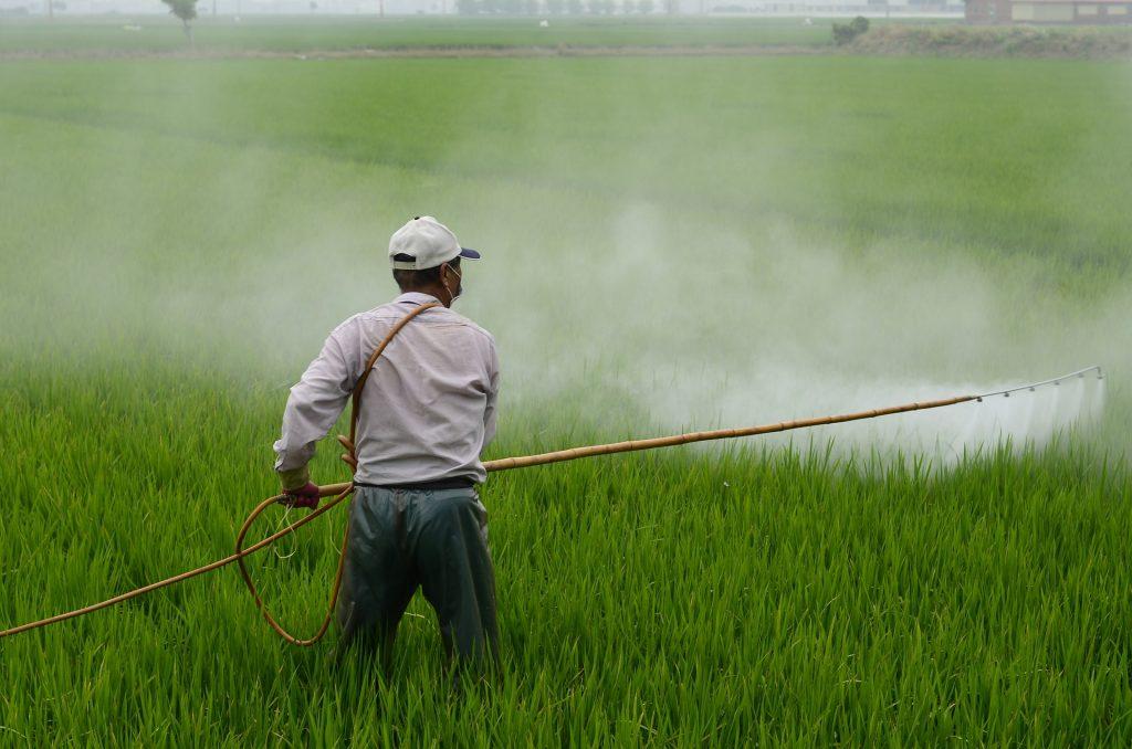 Penggunaan DDT