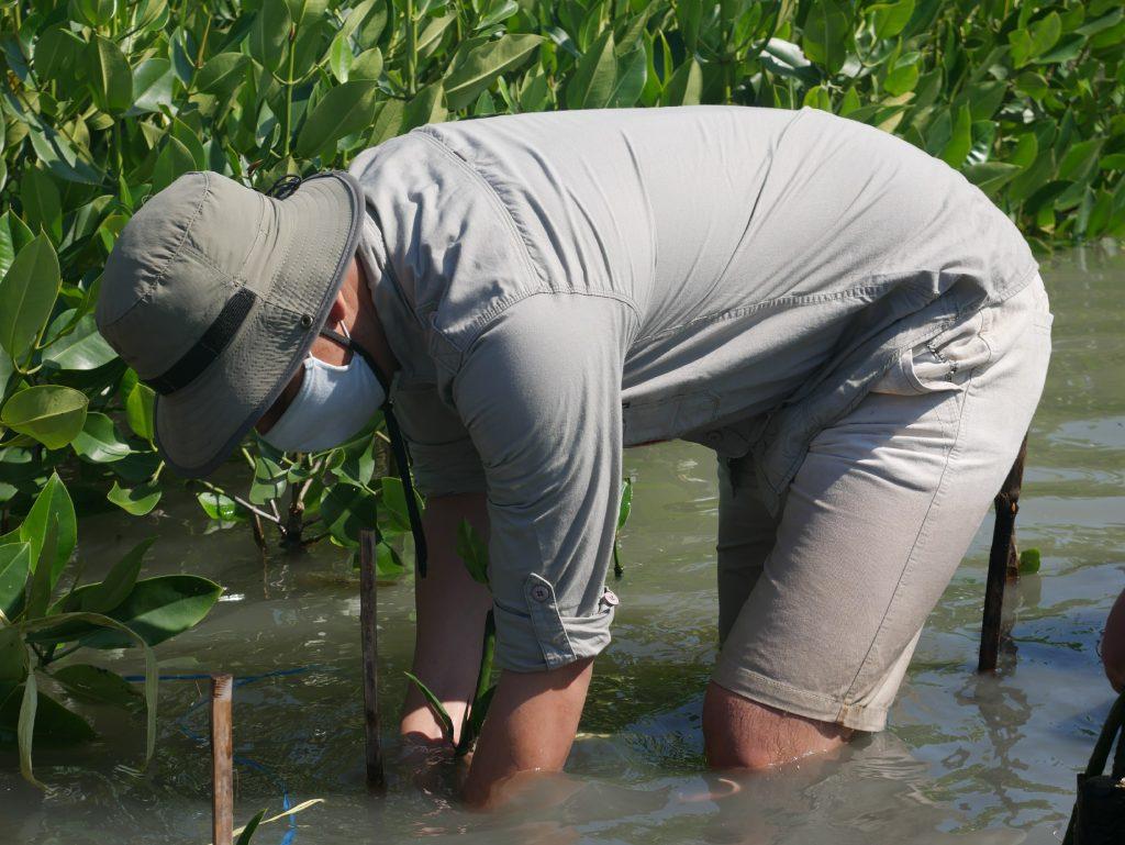 Selamatkan Bumi dalam Hari Mangrove Internasional