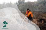 Mengapa Kebakaran di Lahan Gambut Susah Dipadamkan?