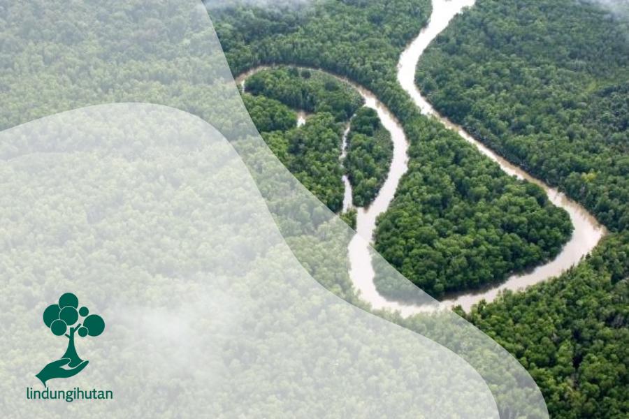 4 Kawasan Hutan Taman Wisata Alam di Papua yang Menakjubkan!