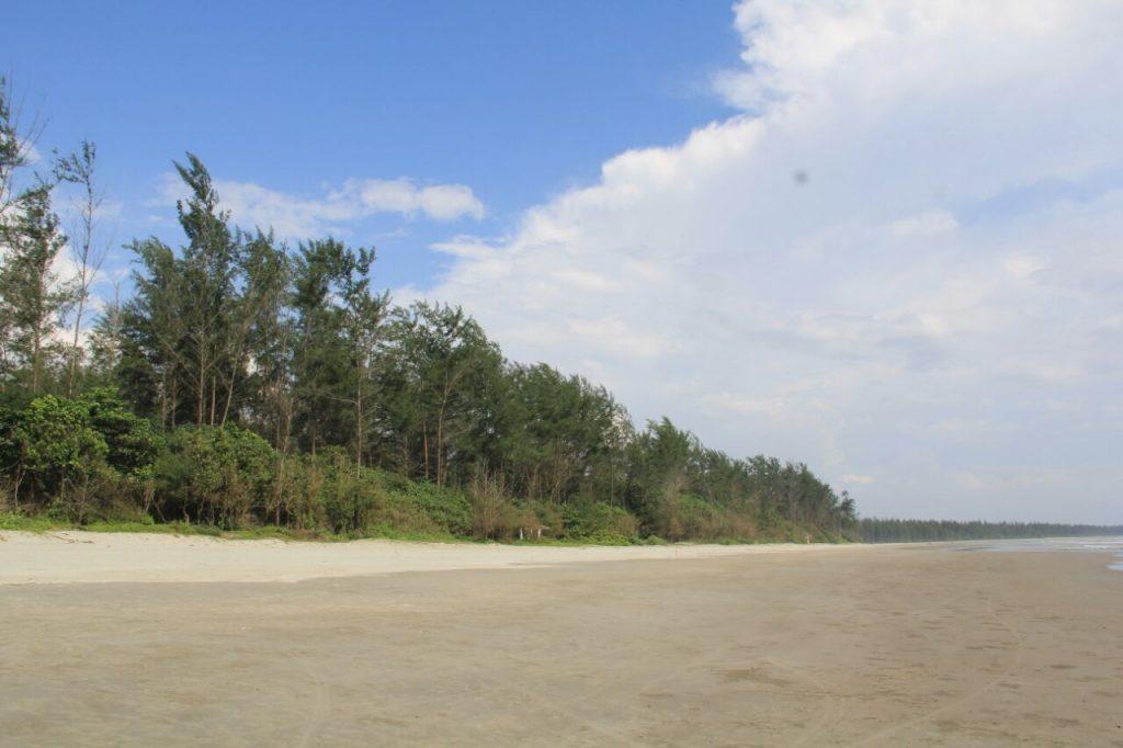 Hutan Pantai
