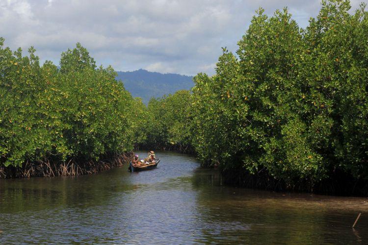 Kawasan mangrove