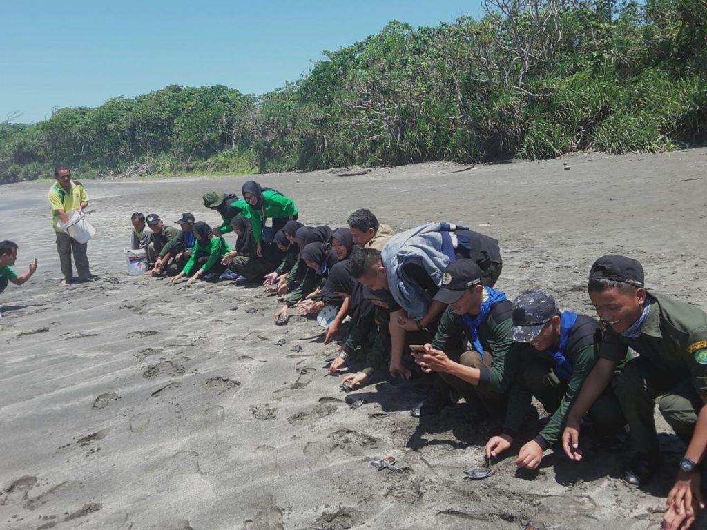 Gambar 3 (http_ksdae.menlhk.go.id_info_2600_suaka-margasatwa-laut-sindangkerta-menjadi-ajang-pengenalan-konservasi-penyu.html)