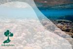 Terumbu Karang, Perawat Ekosistem Laut