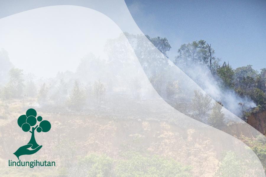 Wajib Tahu Tentang Jejak Karbon