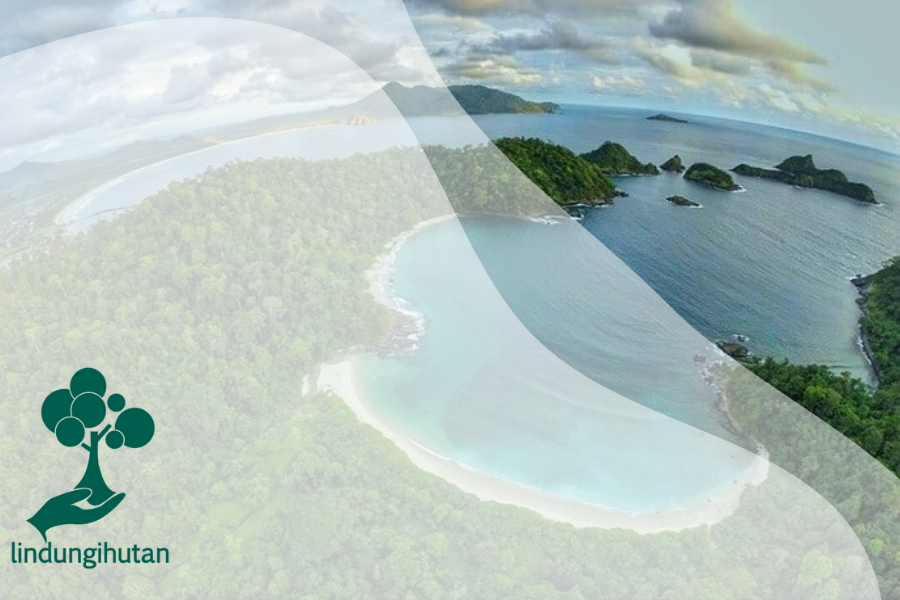 4 Kawasan Konservasi Alam yang Mempesona di Pulau Jawa!