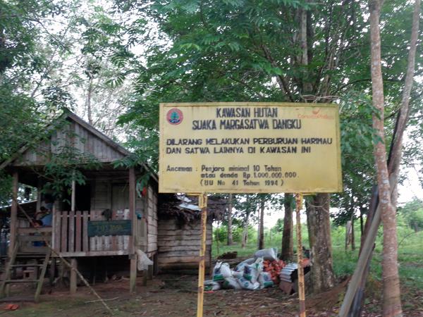 Gambar 1. Kawasan Hutan Suaka Margasatwa Dangku, Sulawesi Selatan