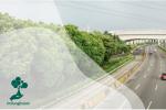 Keberadaan Pohon untuk Green Toll Road Indonesia
