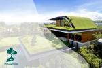 Tanaman Untuk Green Roof