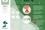 Perwujudan SDG 13 melalui Pelestarian Hutan