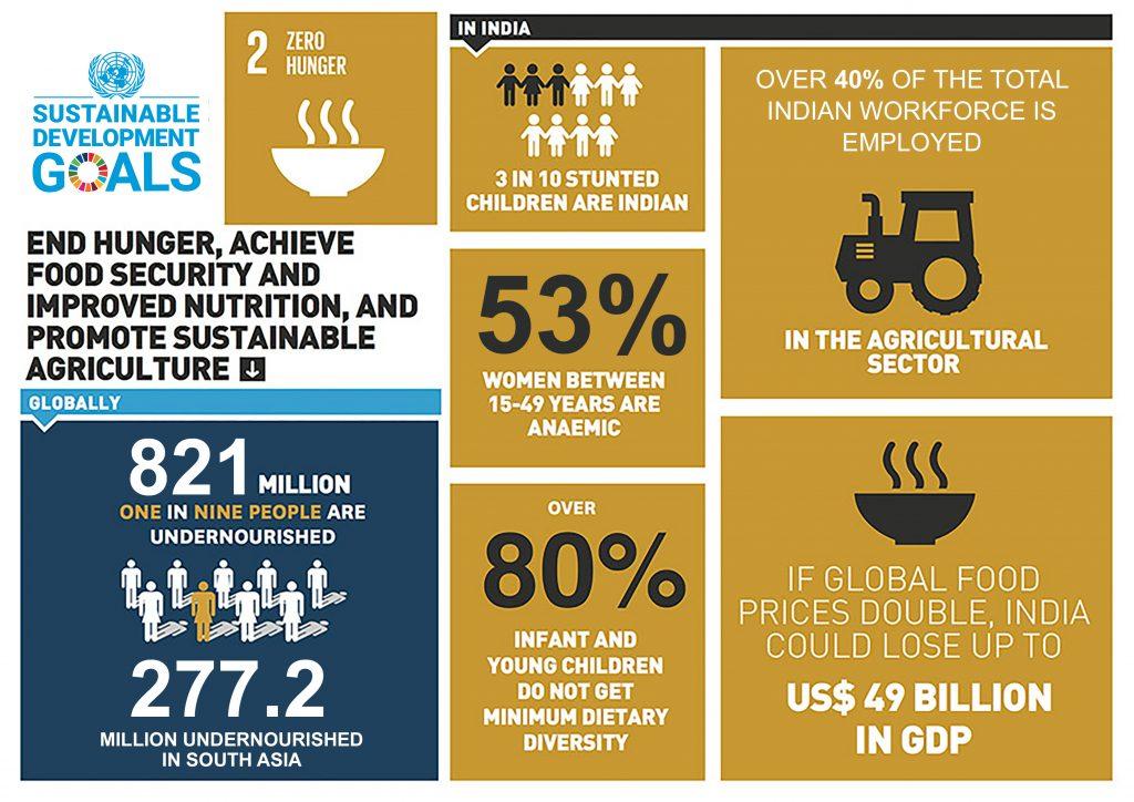 Gambar 1. Infografis SDG 2 dari UN India. Sumber: UN India