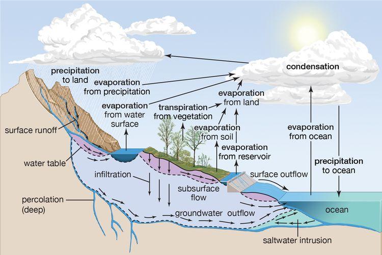 Siklus Hidrologi © kompas.com