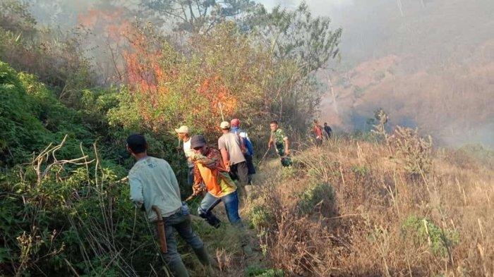 Kebakaran di Kaki Gunung Malabar © Tribunnews