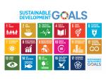Perwujudan SDGs 14 Dengan Pelestarian Hutan