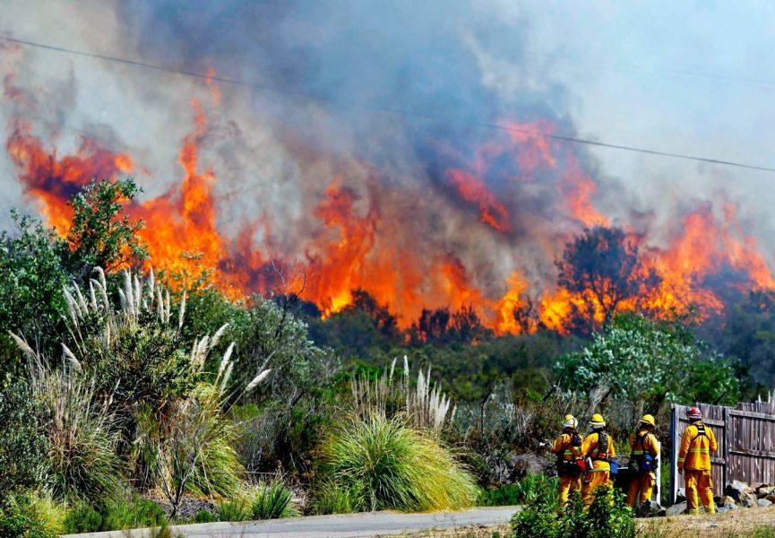 Karhutla: Mengapa Api Tak Kunjung Padam