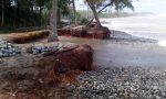 Kegiatan Penanaman di Pantai Karangmalang, Kendal