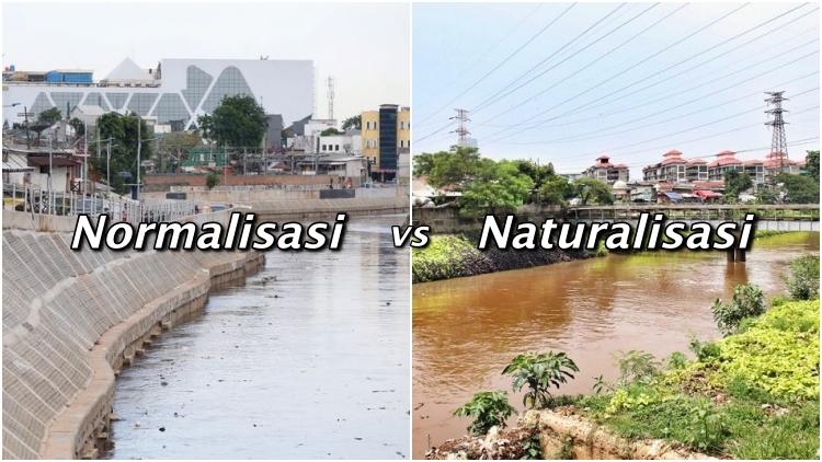 Gambar 1. Perbedaan normalisasi dan naturalisasi. Sumber: hipwee.com