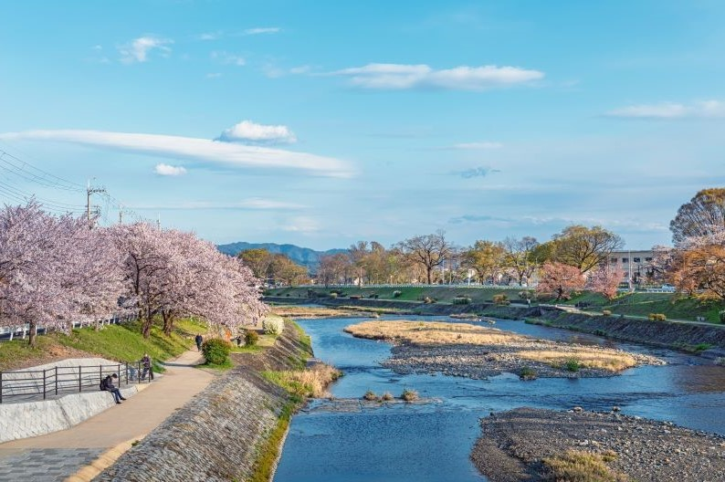 Gambar 2. Naturalisasi Sungai di Jepang. Sumber: forestdigest.com