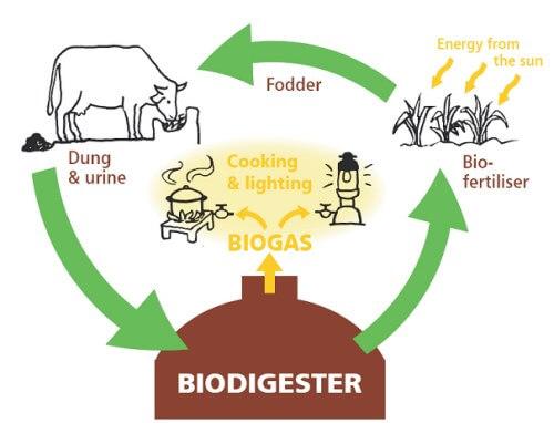 Gambar 3. Biogas- Daur Ulang sampah dapur